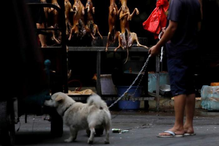 Người Trung Quốc vẫn đổ xô đi ăn thịt chó trong lễ hội tai tiếng