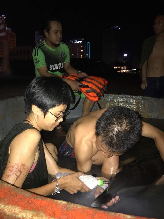 Nhóm bạn trẻ thức trắng đêm để chăm sóc và cho chú cá heo uống sữa.