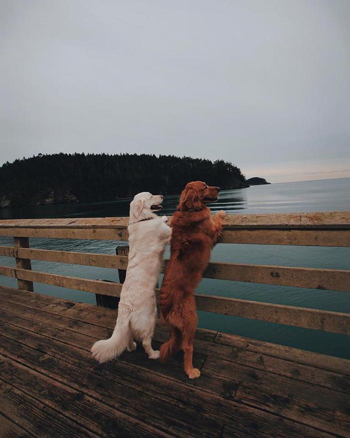 Cùng nhau ngắm hoàng hôn trên mỗi nơi mình đi qua