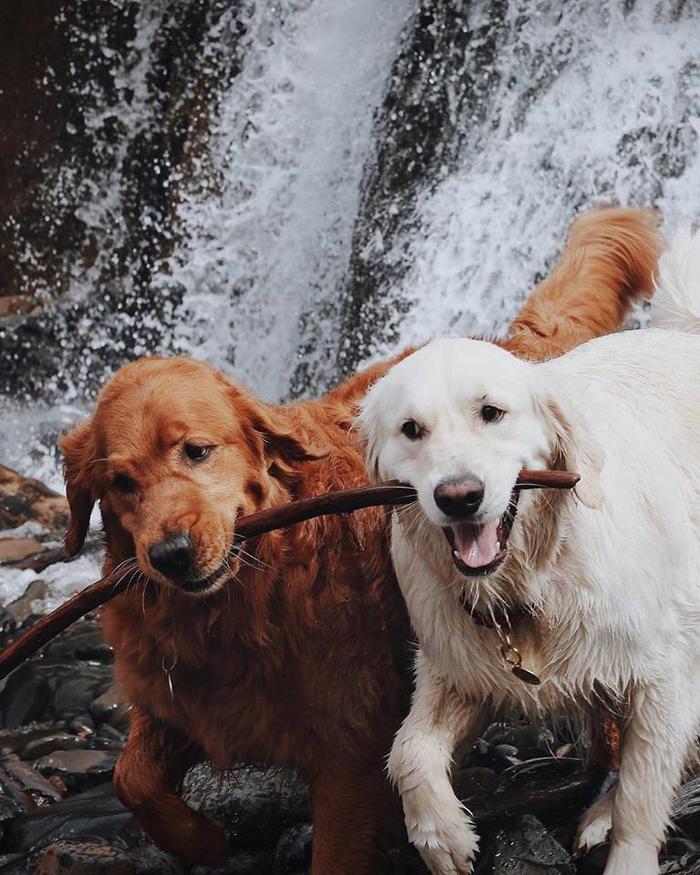 """""""Chơi đùa bên thác nước cùng em đi"""""""