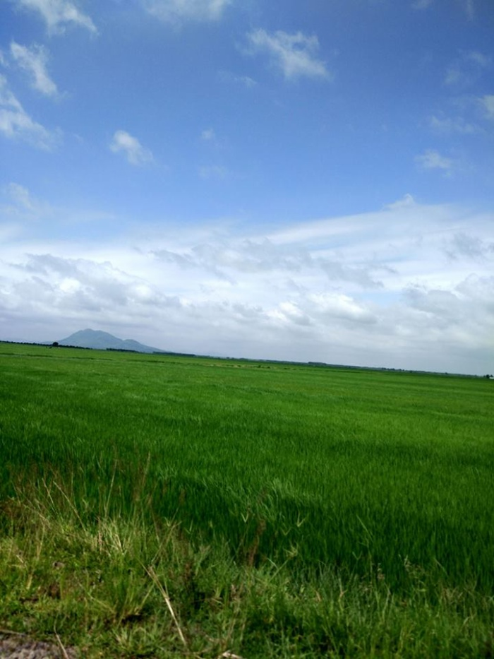 Đồng xanh Việt Nam (Ảnh: Doan Tran)