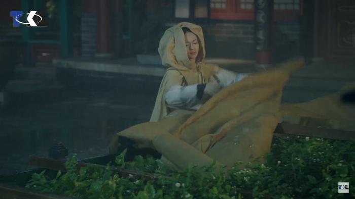 Bất chấp mưa lớn, Anh Lạc vẫn đội mưa cứu lấy các luống hoa của Hoàng hậu.