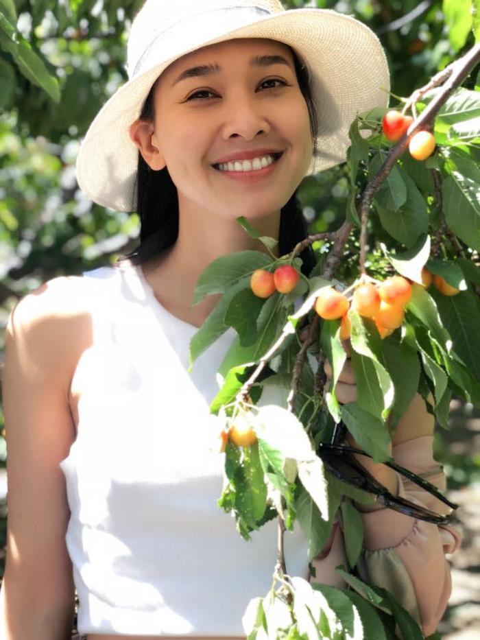 Nhiều người đoán rằng đây cũng chính là cây trong khu vườn của Dương Mỹ Linh.