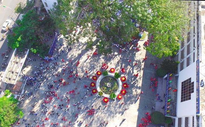 Hoa trạng nguyên nở đỏ ở bồn hoa sân trường.