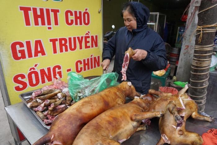 Giáo sư Trần Lâm Biền: 'Hạn chế giết thịt chó để phòng bệnh dại thì đúng nhưngnói ăn thịt chó gây phản cảm là sai'