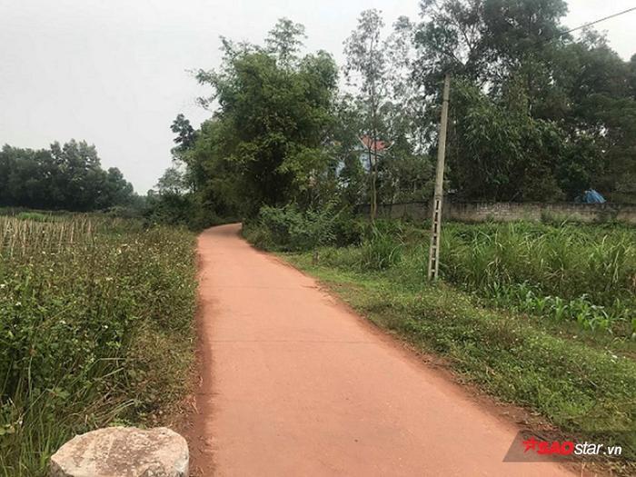 Con đường dẫn vào nhà Lê Văn Luyện.