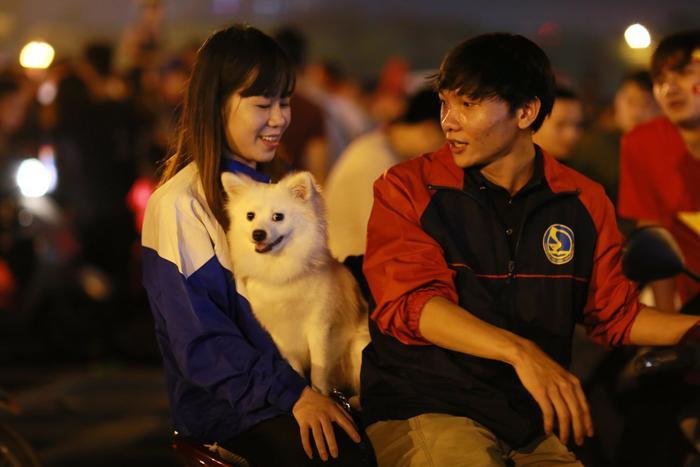 Cặp đôi đưa cả cún cưng đi bão