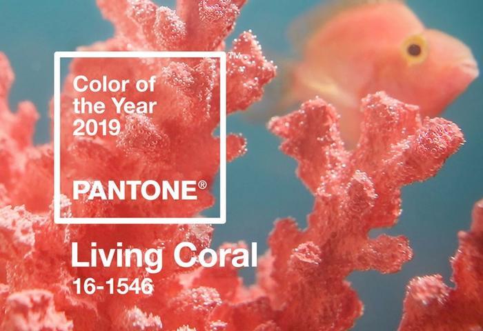 Pantone công bố chính thức màu cam san hô sẽ là tông màu chủ đạo vào năm 2019 trên trang chủ.