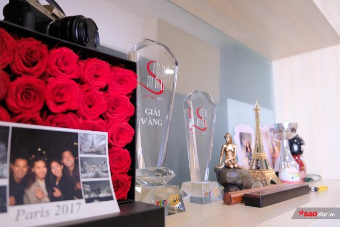 Căn phòng có bàn tiếp khách và tủ trang trí. Quỳnh Hoa đặt cúp và quà lưu niệm trên kệ.