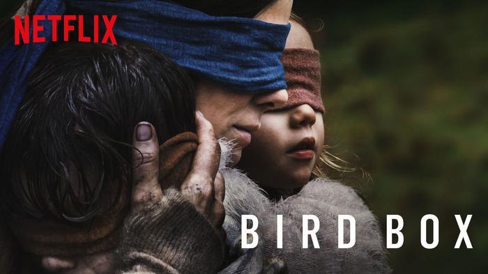 Bird Box là phim kể về một bà mẹ cố gắng bảo vệ các con khỏi một thế lực siêu nhiên sẽ giết chết con người nếu nhìn thấy nó.
