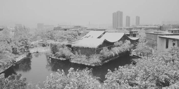 Học viện Mỹ thuật Trung Quốc được bao phủ bởi màu trắng xoá. Ảnh: tiin.vn
