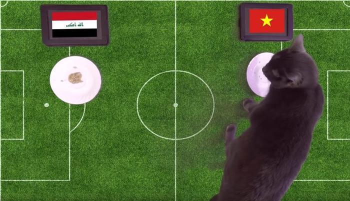 Mèo Cass chọn Việt Nam thắng Iraq.
