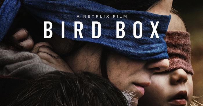 Làm thử thách như phim Bird Box, tài xế gây ra tai nạn kinh hoàng trong khi bịt mắt! ảnh 0