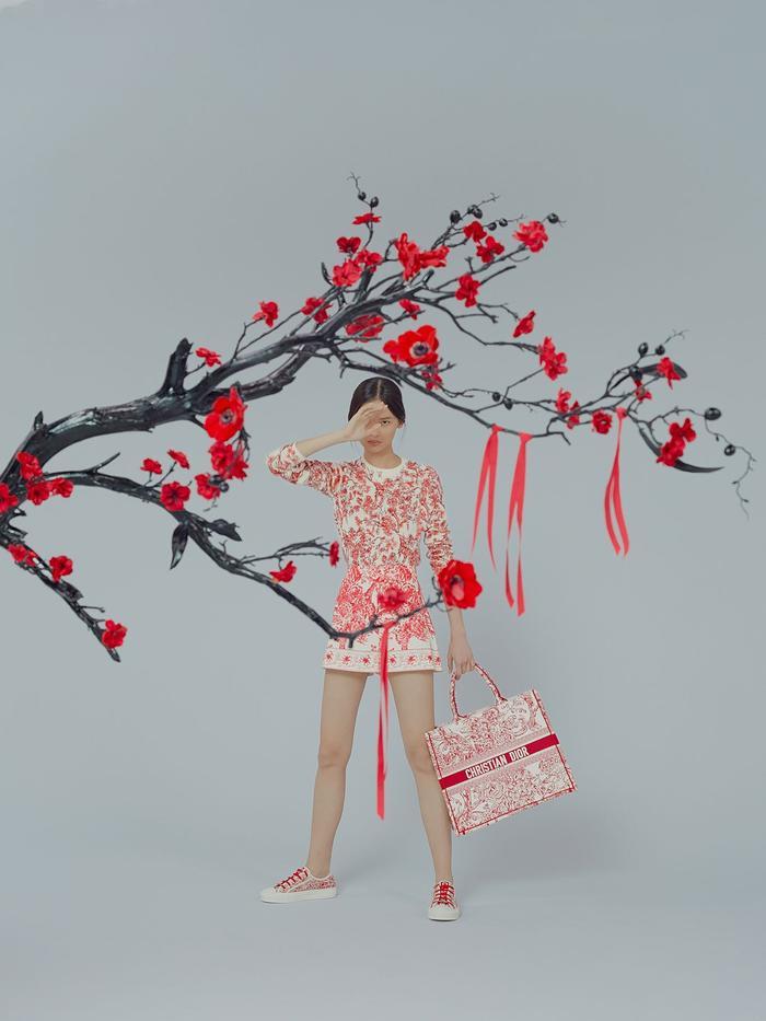 Đa phần cư dân mạng đều cho rằng các thiết kế mới nhất của hãng Dior quá sến sẩm và trông như hàng của Taobao