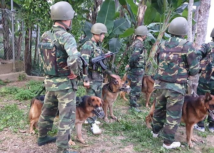 Lực lượng chức năng và chó nghiệp vụ được điều động đến hiện trường. Ảnh: An ninh Thủ đô