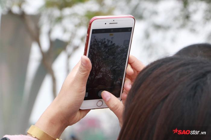 Dù chỉ chụp qua điện thoại thì vẫn có thể có được những bức ảnh cực đẹp.
