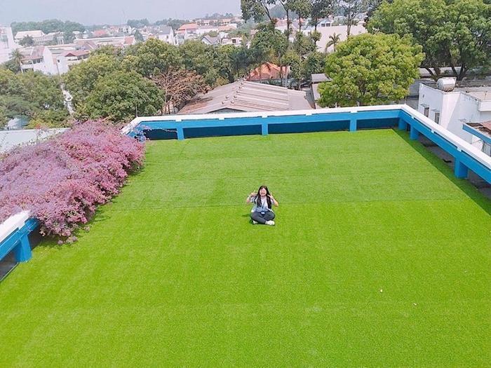 Thảm cỏ xanh mượt trên sân thượng dãy nhà Ngoại ngữ cũng là địa điểm ưa thích của các bạn sinh viên. Ảnh: Bình Dương 24H