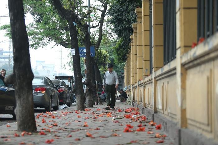 Một Hà Nội xô bồ, vội vã nhường lại sự bình yên với những bông hoa Gạo.