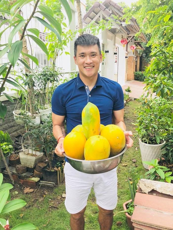 Ngoài rau, trong vườn nhà Công Vinh - Thủy Tiên còn có nhiều trái cây.