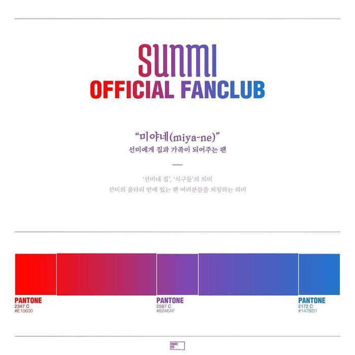 Tên và màu sắc chính thức cho fandom của Sunmi vừa được công bố.
