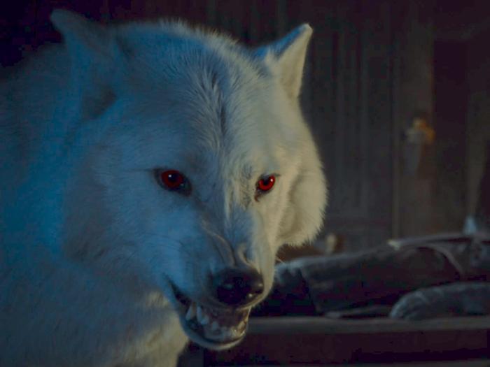 Fan Game of Thrones vỗ tay kịch liệt trước sự trở lại của Bóng Ma trong tập 2 Trò chơi vương quyền mùa 8 ảnh 1