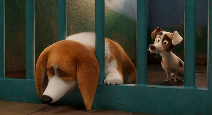 Review phim hoạt hình The Queens Corgi: Mượn chuyện những chú chó để giáo dục con trẻ ảnh 7