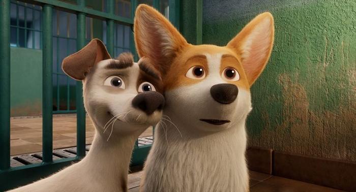 Review phim hoạt hình The Queens Corgi: Mượn chuyện những chú chó để giáo dục con trẻ ảnh 6