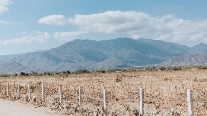 Nhiều mảnh đất khô cằn vì nắng nóng