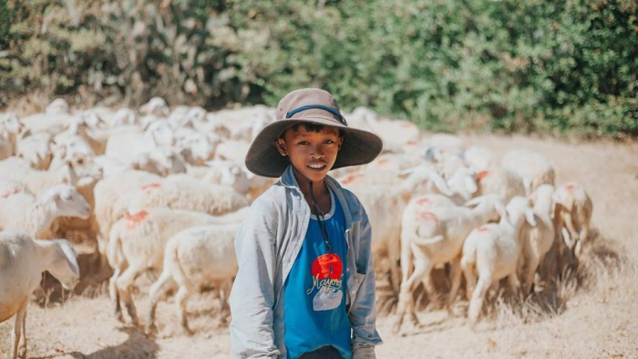 Nụ cười chất phác của chú bé chăn cừu miền duyên hải.