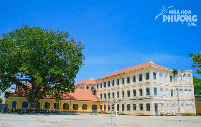 Những bức tường vàng, mái ngói đỏ tạo nên nét đặc biệt cho Đại học Quy Nhơn.