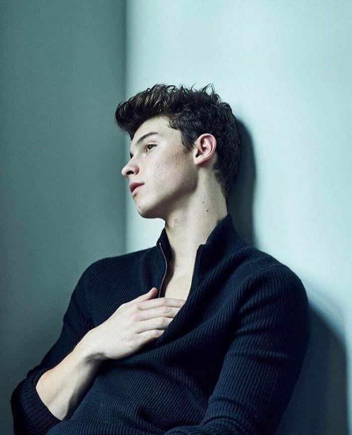 Shawn Mendes đã ghi dấu ấn ngay từ album đầu tiên.