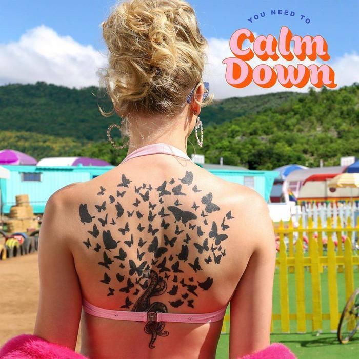 Hình ảnh từ single You Need To Calm Down của Taylor.