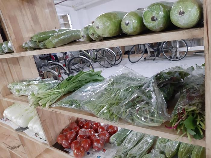 Các loại rau củ tươi ngon, được bảo quản sạch sẽ.