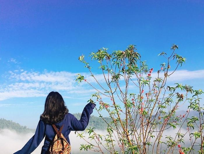 Kết hợp với không khí se lạnh của TP. Bảo Lộc, khung cảnh tạiĐại học Tôn Đức Thắng – cơ sở Bảo Lộc quả thực là điểm đến cực kỳ tuyệt vời.