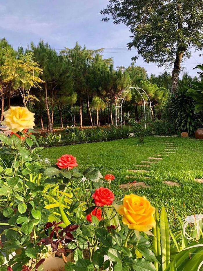 """""""Khu vườn thượng uyển"""" được bày trí đẹp mắt, cây cối, hoa cỏ được cắt tỉa gọn gàng."""