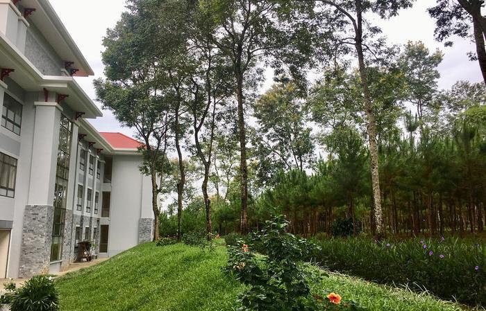 Đâu đâu cũng là những mảng không gian xanh bao bọc các phòng học, tạo không khí trong lành, khung cảnh đẹp mắt.