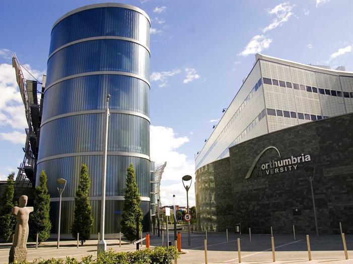Ive học ngành thiết kế công nghiệp tại Newcastle Polytechnic, nay là Đại học Northumbria.