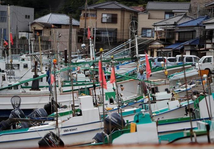 Tàu thuyền neo đậu ở bờ sau một chuyến đánh bắt cá voi xa bờ tại làng chài Minamiboso.