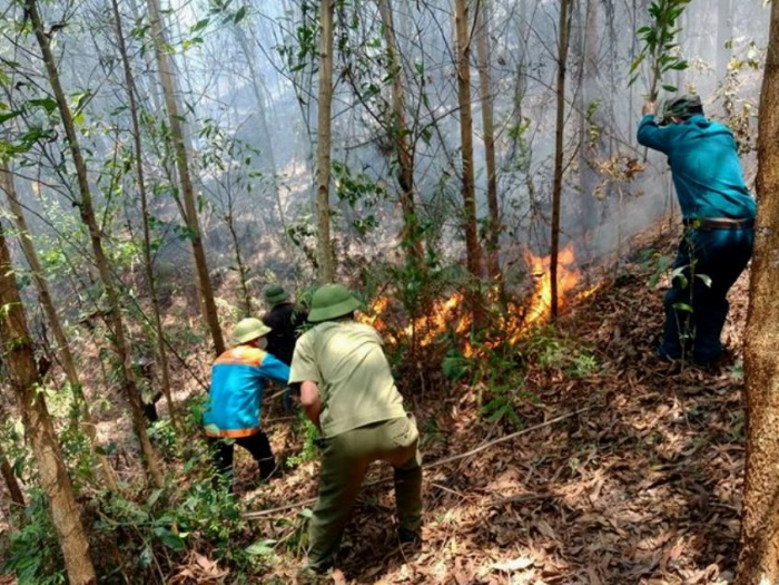 Hàng trăm người được huy động để khống chế đám cháy