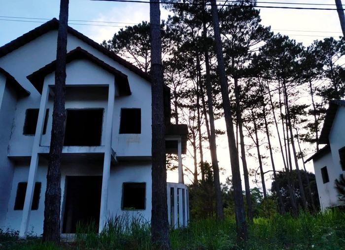 """Hình ảnh """"trường giữa rừng thông"""" được Lê Cát Trọng Lý đính kèm trong bài viết trên Facebook."""