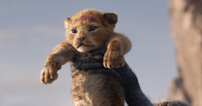 The Lion King 2019: Hành trình bi tráng và chân thực bật nhất ảnh 1
