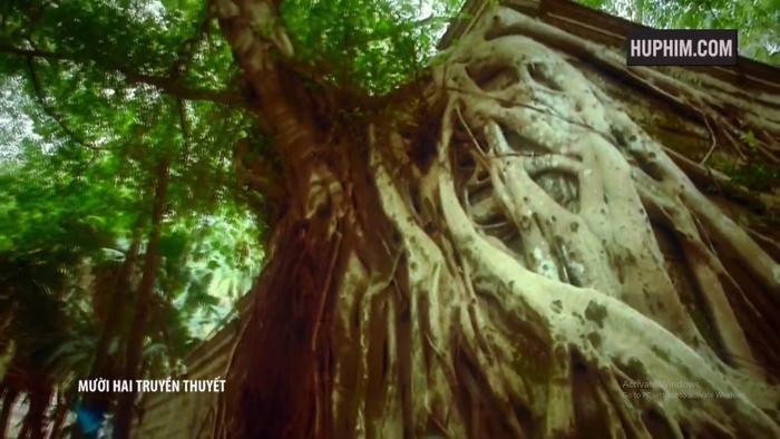 Tập 5 12 truyền thuyết: Cây đa thành tinh giết người ở Tân Giới, liệu Dịch gia có dính líu đến chuyện này không? ảnh 0