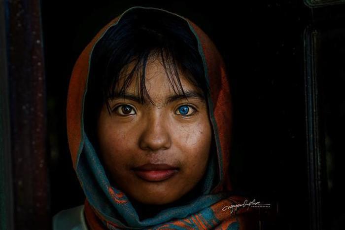 Sa Pa gây ấn tượng với đôi mắt 2 màu. Ảnh: Nguyễn Vũ Phước.