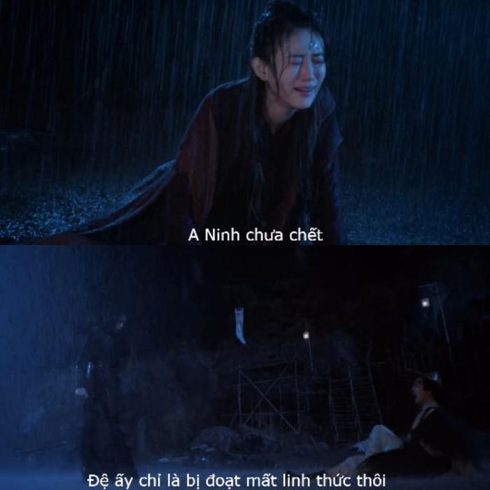 Ôn Ninh chưa thực sự chết, cậu chỉ mất đi linh thức mà thôi.