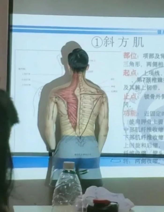 Các nhóm cơ trên chính cơ thể người thầy được chiếu lên máy chiếu.
