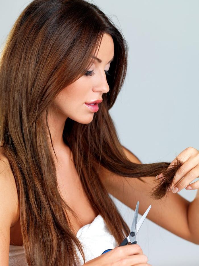 Cắt tóc thường xuyên không làm tóc mọc nhanh hơn.