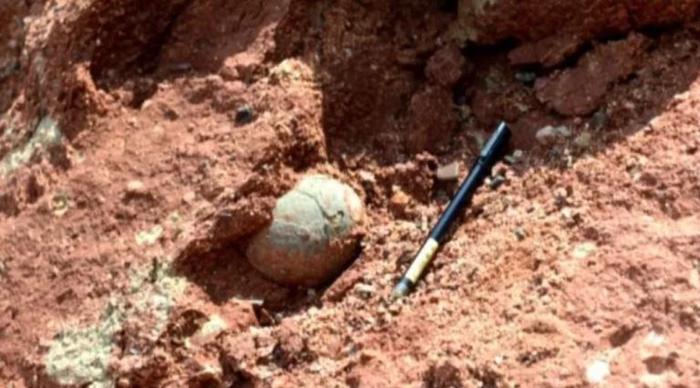 """Ổ trứng được phát hiện ở tỉnh Quảng Đông, nơi được mệnh danh """"ngôi nhà của khủng long""""."""