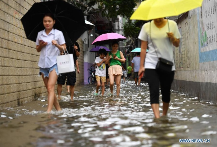 Theo Asia Times, bão Wipha kèm theo mưa lớn và gió mạnh đã gây ảnh hưởng lớn tới tình trạng giao thông. Ngoài ra, khoảng 20 người đã phải nhập viện tại Hong Kong do ảnh hưởng của bão.