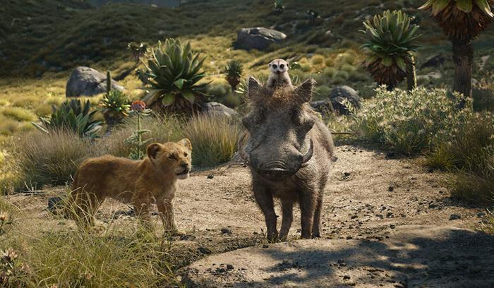 The Lion King thu 1 tỷ USD nhưng Disney không thể đi đường dài nếu tiếp tục làm phim như vậy! ảnh 1