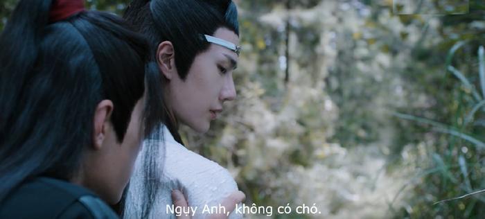Di Lăng lão tổ trong mắt người đời như thế nào cũng không quan trọng, hắn chỉ là Ngụy Anh của Lam Trạm mà thôi